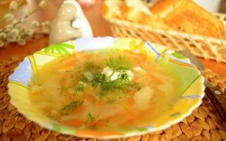 Щи с курицей и свежей капустой: рецепты