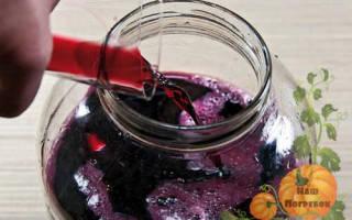 Домашнее вино из черноплодки: рецепты