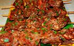 Шашлык в духовке из свинины: рецепты