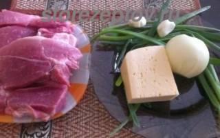 Мясо в духовке с помидором и сыром: рецепты