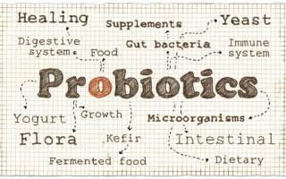 Пробиотики для женщин: список препаратов и отзывы