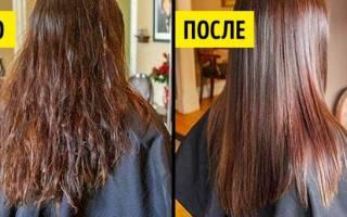 Советы по уходу за волосами в домашних условиях