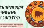 2019 год Свиньи для знаков Зодиака по восточному гороскопу
