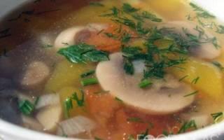 Суп грибной из свежих грибов: рецепты