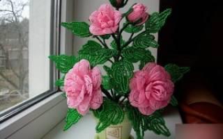 Как сделать розу из бисера: матер-класс для начинающих