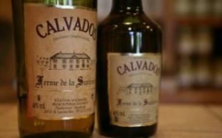 Кальвадос в домашних условиях из яблок – рецепт приготовления, видео