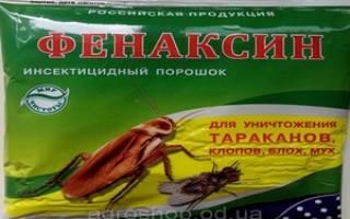 Фенаксин от муравьев: инструкция препарата