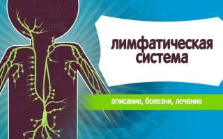 Чем опасно загрязнение лимфатической системы человека – строение, функции и заболевания