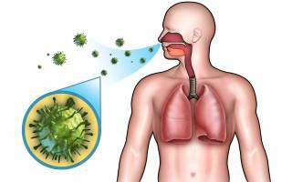 Воспаление горла у ребенка и взрослого – симптомы и методы лечения