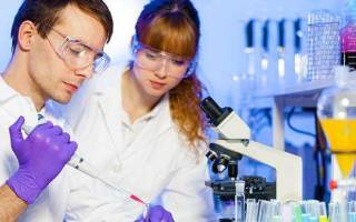 Токсокара у взрослых – симптомы и лечение народными средствами и препаратами