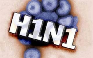 Лечение свиного гриппа у человека
