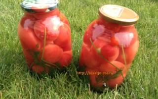 Как закрыть помидоры на зиму в литровых банках