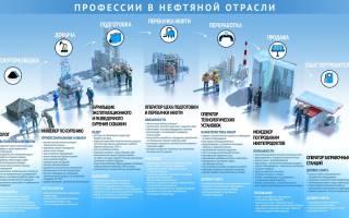 Самые востребованные профессии в России в 2019 году для женщин и мужчин