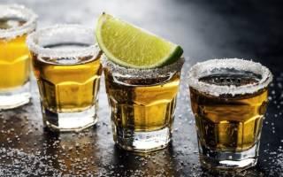 Как пить текилу и чем закусывать. Текила – какую пьют и с чем
