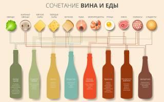 С чем пьют красное вино – общие правила употребления