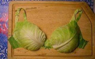 Топ-15 продуктов для увеличения размера вашего бюста