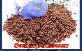 Как очистить кишечник семенами льна: полезные свойства и рецепты