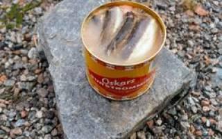 Сюрстремминг – шведский деликатес