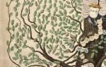 Как нарисовать семейное дерево: шаблоны и программы