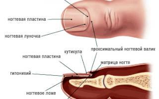 Лазерное лечение грибка ногтей в клинике